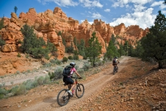 Casto Canyon to Losee Canyon bike loop, Utah near Bryce NP