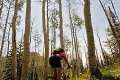 biking the Virgin River Rim trail, Utah