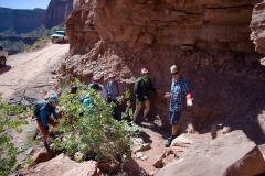 Canyonlands-National-Park-Full-Day-Guided-Mtb-Tour-At-Dinosaur-Fossils-1