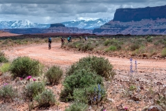 Canyonlands-National-Park-Full-Day-Guided-Mtb-Tour-Flower-Zone-2