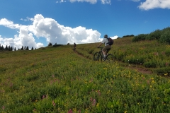 Durango - Colorado Trail
