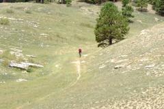 Wide grassy meadows on the Arizona Trail, Kaibab Plateau
