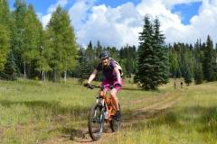 Kaibab Plateau trails