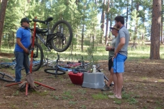 Bike tune ups