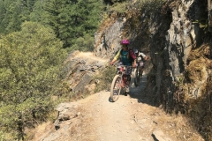 Mountain-Biker-Guide-Through-California-Sierra-Switchbacks-Singletrack