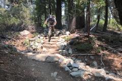 Mountain-Biker-Through-California-Sierra-Forest