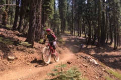 Mountain-Bikers-Fast-through-California-Sierra-Buttes-Forest