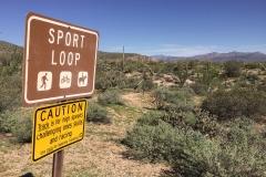 Sport Loop