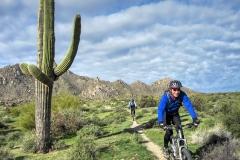 Smiling past the Saguaros