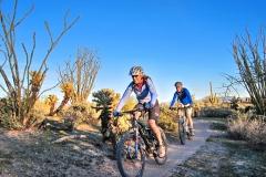 Sunset ride duo