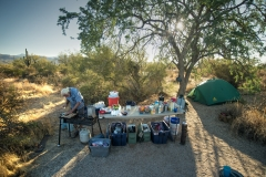 D4 Camp
