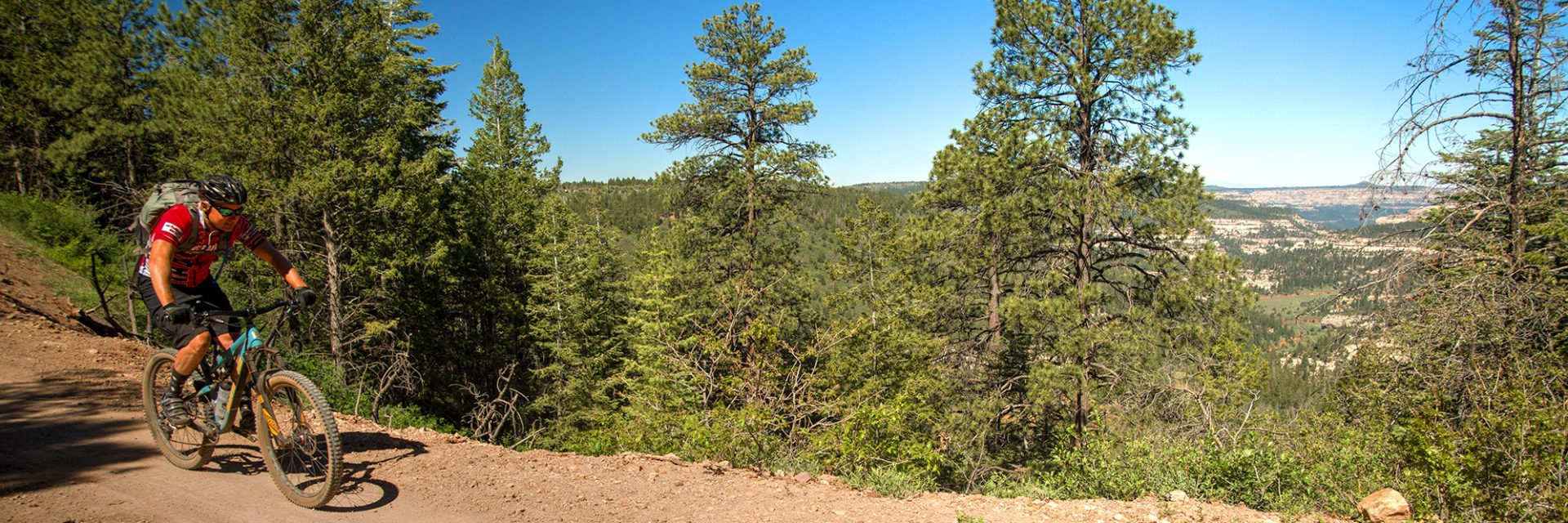 A rider on Bears Ears tour speeds down to Big Notch with a view down into Dark Canyon