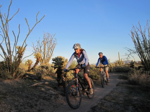 The Arizona's Sonoran Desert guided mountain bike tour is sweet singletrack for moderate-intermediate riders who love winter sun
