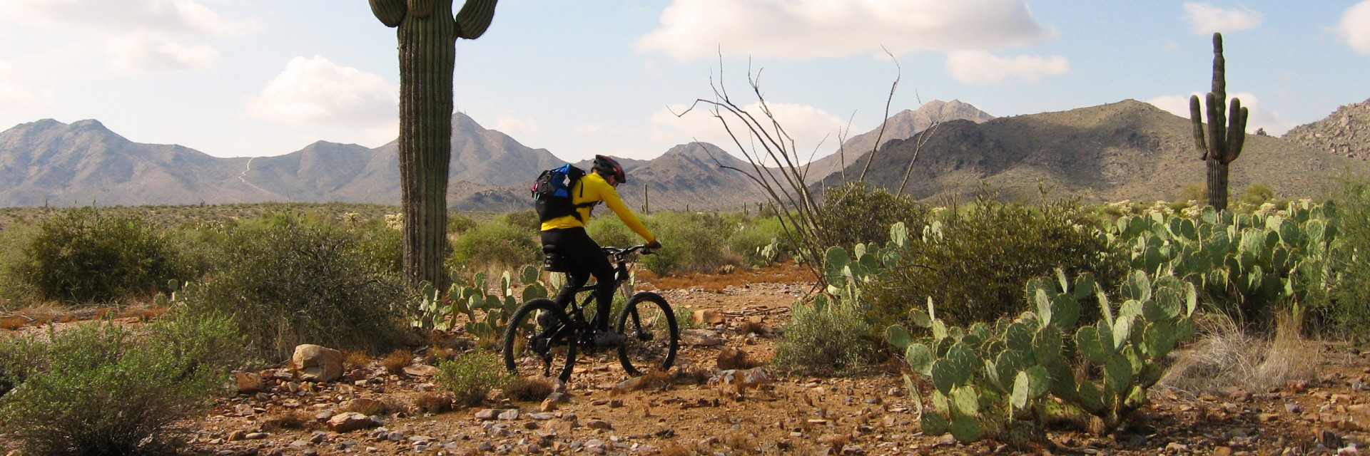 Sonoran Desert mountain biking in early and late winter