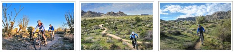 A photo gallery about the Arizona Sonoran Desert guided mountain bike tour
