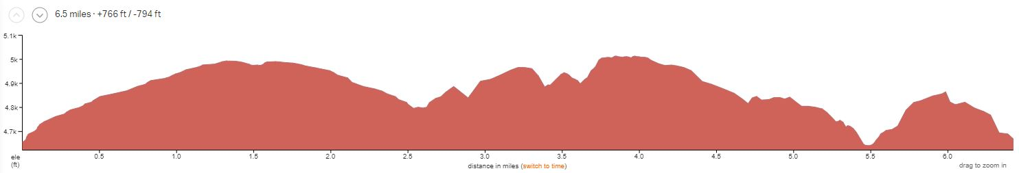 Bartlett Wash Elevation Profile