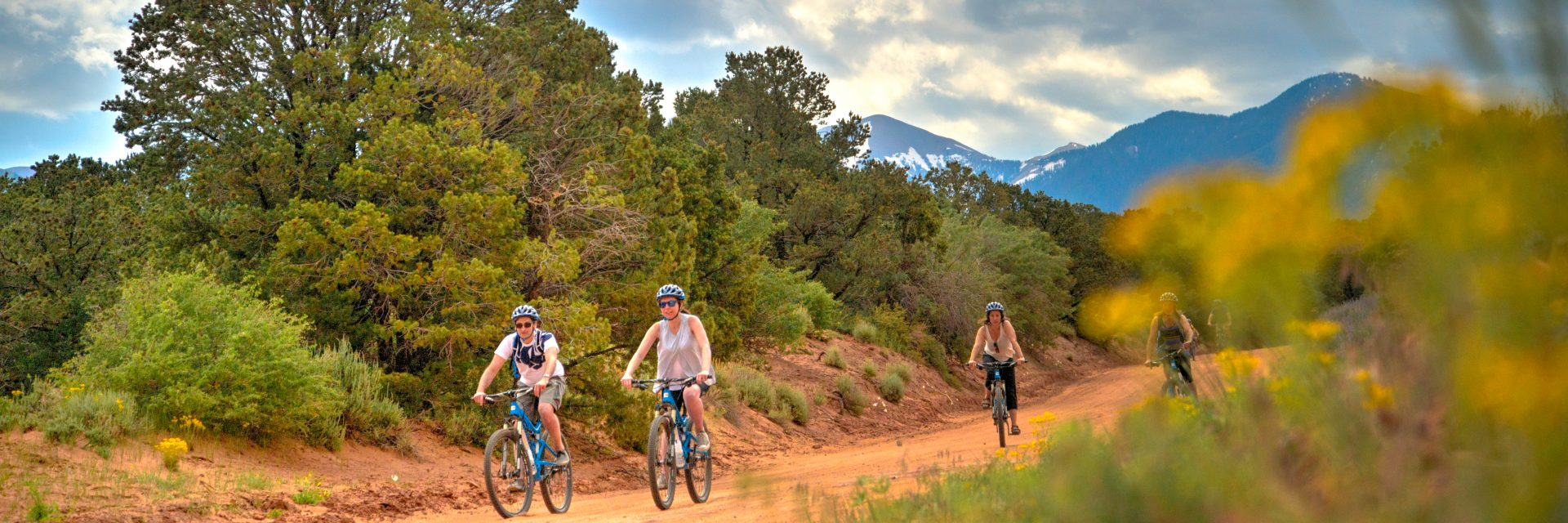 Mountain bike riders begin the big descent on Sand Flats Road as part of the Sunrise Downhill guided tour