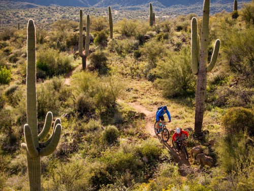 Black Canyon Trail, Central Arizona, singletrack IMBA epic ride, winter sun tour