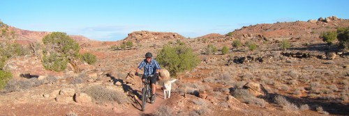 Dogs love the Brands Trail, too! Moab UT