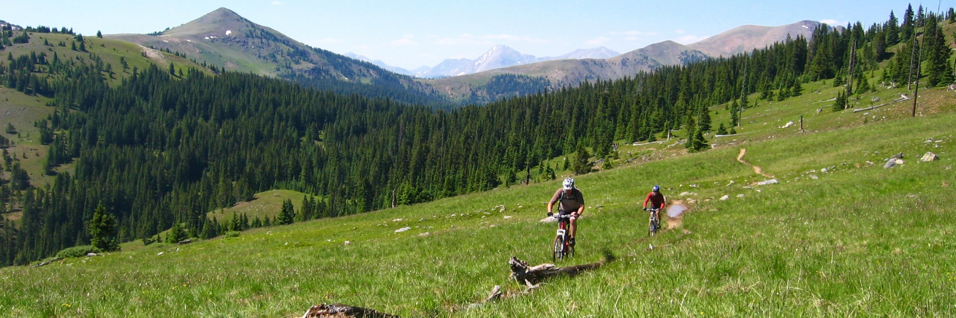 Riders traverse a high meadow on the Durango - Colorado Trail Singletrack during a mid-summer guided mountain bike tour