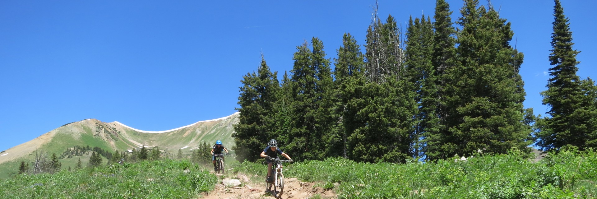 Rocky downhill section of the Colorado Trail - advanced singletrack