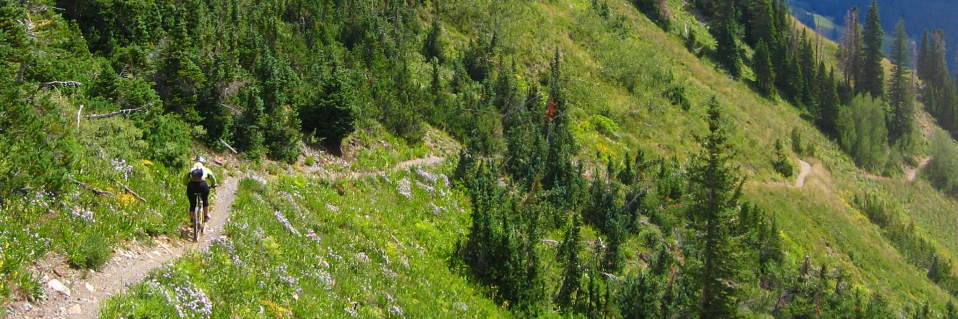 A long traverse contours the ridge near Crested Butte, guided mountain bike tour