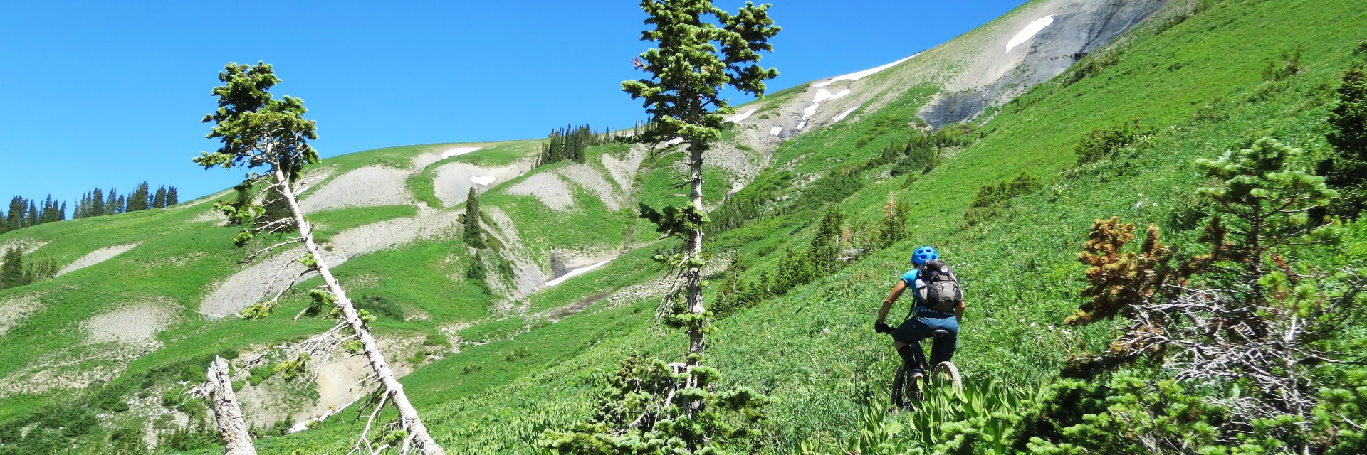 Crested Butte singletrack above treeline
