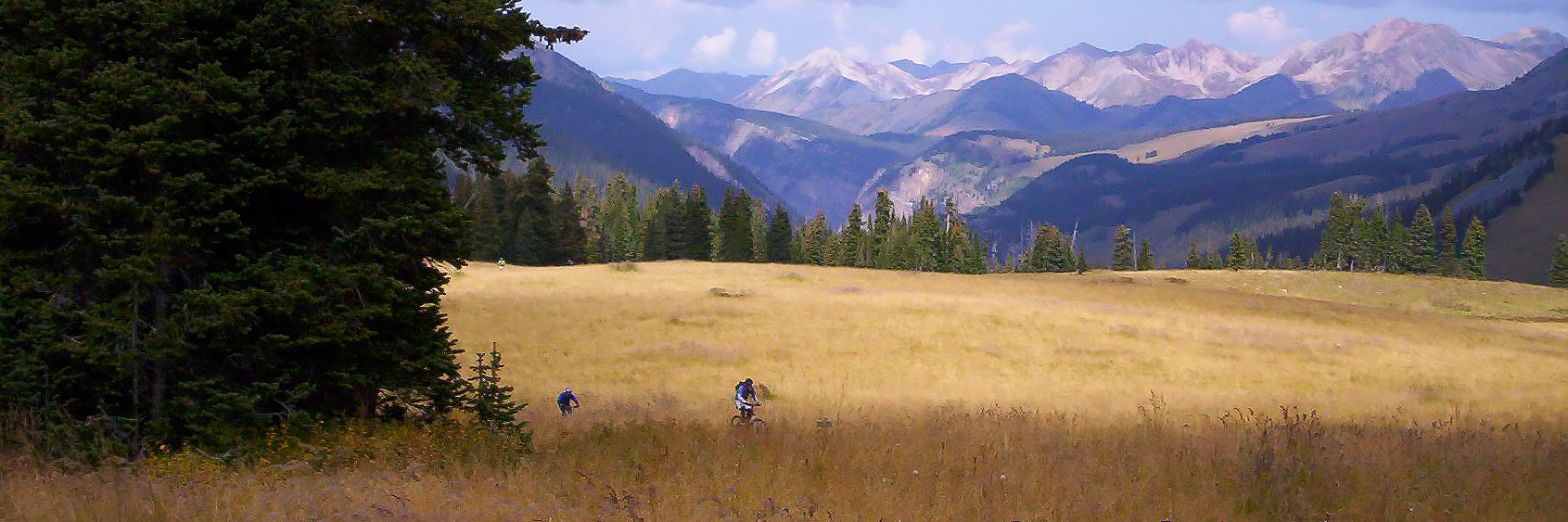 Riders cross a dry grassy meadow high up on the Crested Butte Singletrack guided mountain bike tour