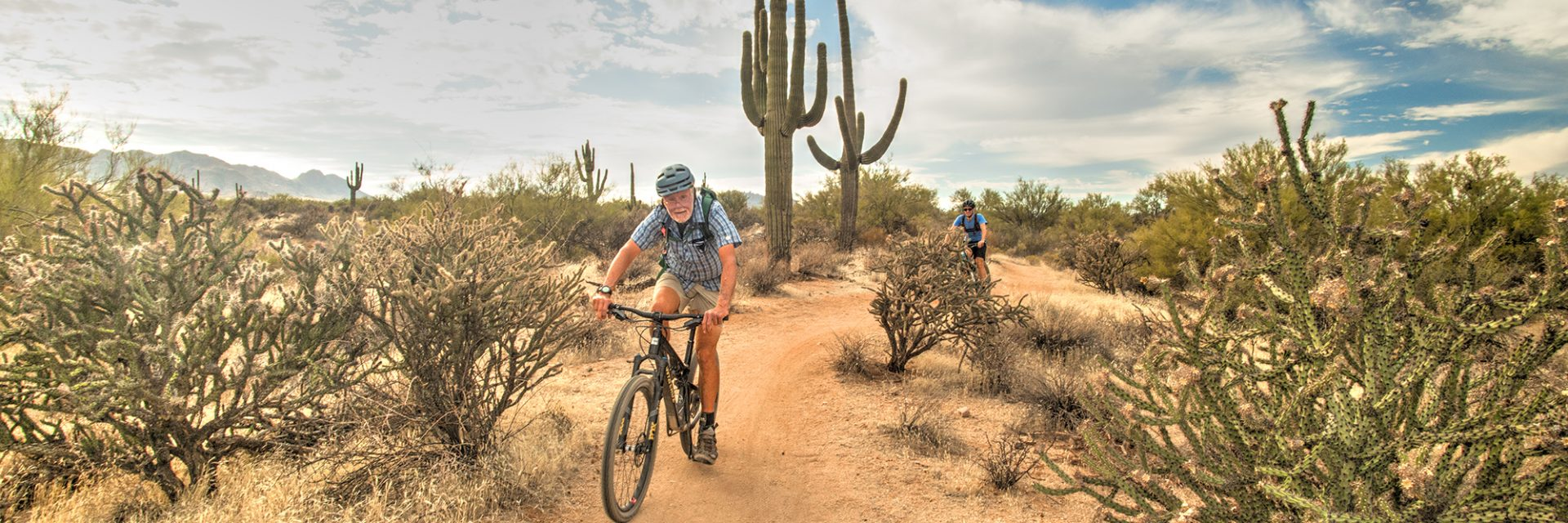 Pemberton Trail, McDowell Mountain Park, Arizona's Sonoran Desert guided mtb tour near Phoenix, AZ