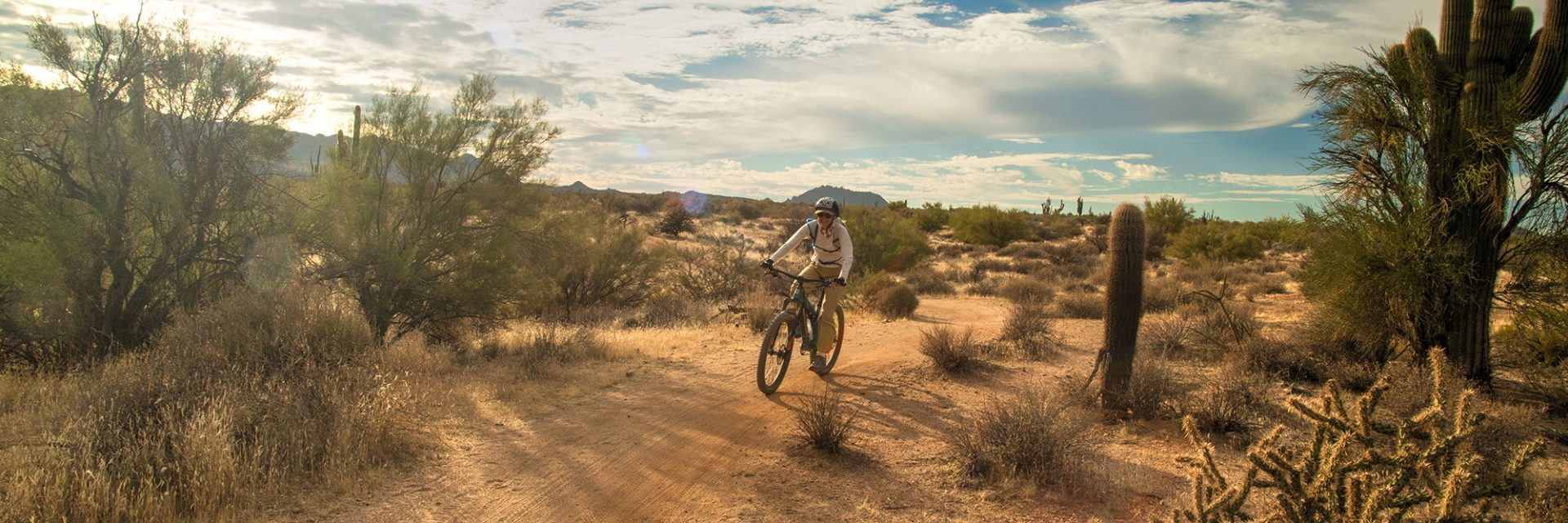 North Leg of Pemberton Trail, McDowell Mountain Park, Arizona's Sonoran Desert guided mtb tour near Phoenix, AZ