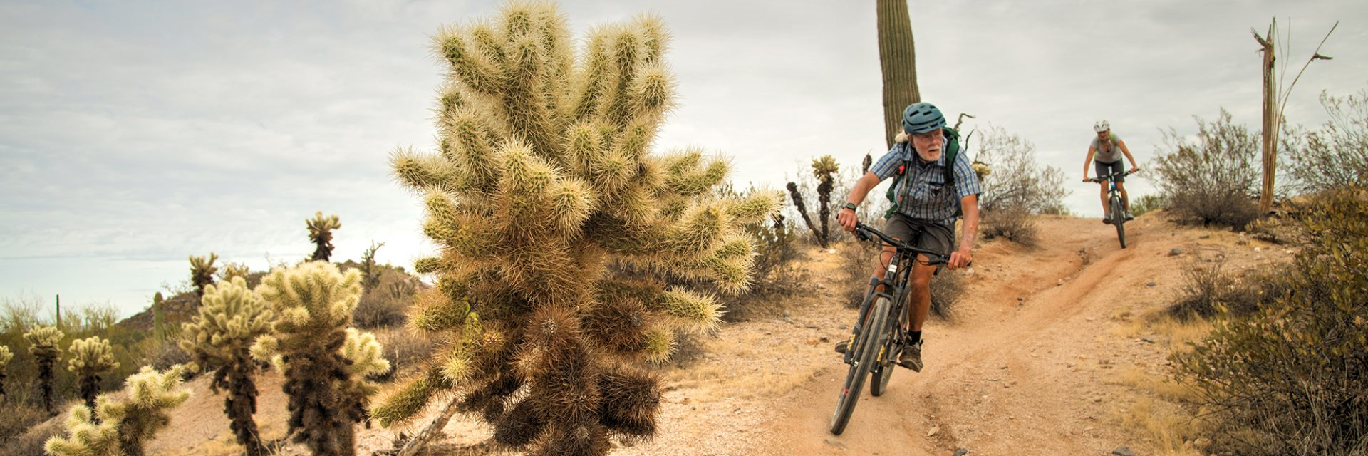Competitive Track, McDowell Mountain Park, Arizona's Sonoran Desert guided mtb tour near Phoenix, AZ