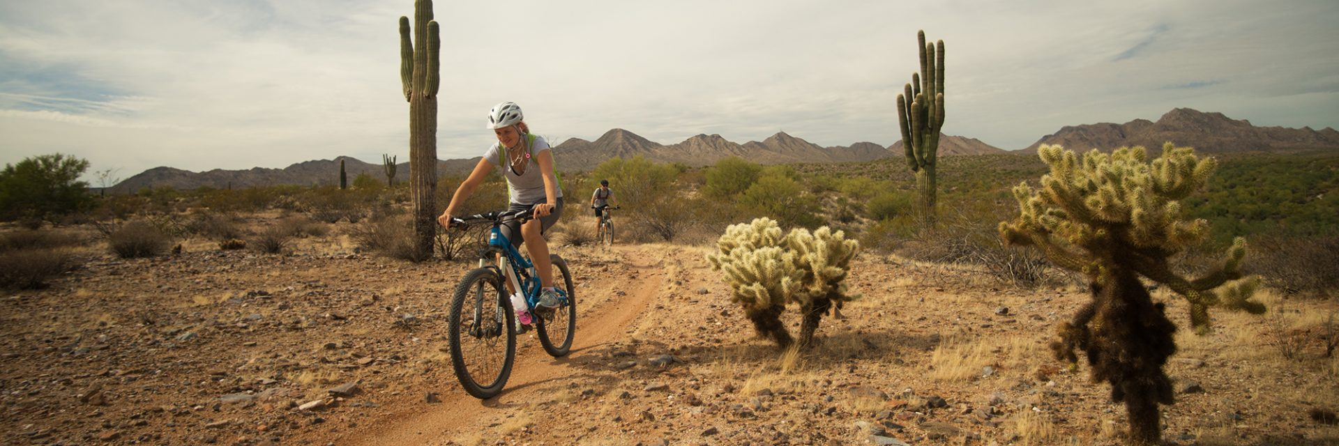 Ridge above South Wash, Long Loop, McDowell Competitive Track, Arizona's Sonoran Desert guided mtb tour near Phoenix, AZ