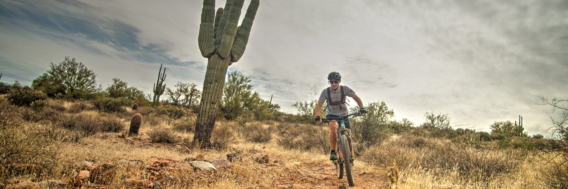 Half way around the Long Loop, McDowell Competitive Track, Arizona's Sonoran Desert guided mtb tour near Phoenix, AZ