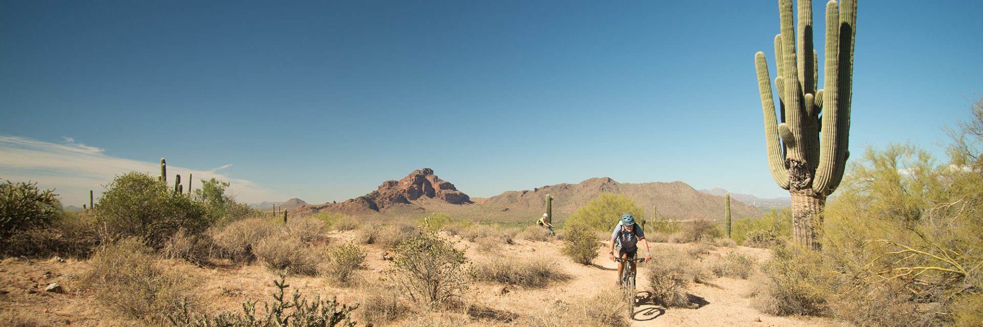 Midway up the Wild Horse Trail, Arizona's Sonoran Desert guided mtb tour near Phoenix, AZ