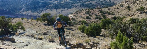 A rider powers through a tough move on a very climby section of the Best of Fruita inn-based guided mountain bike tour