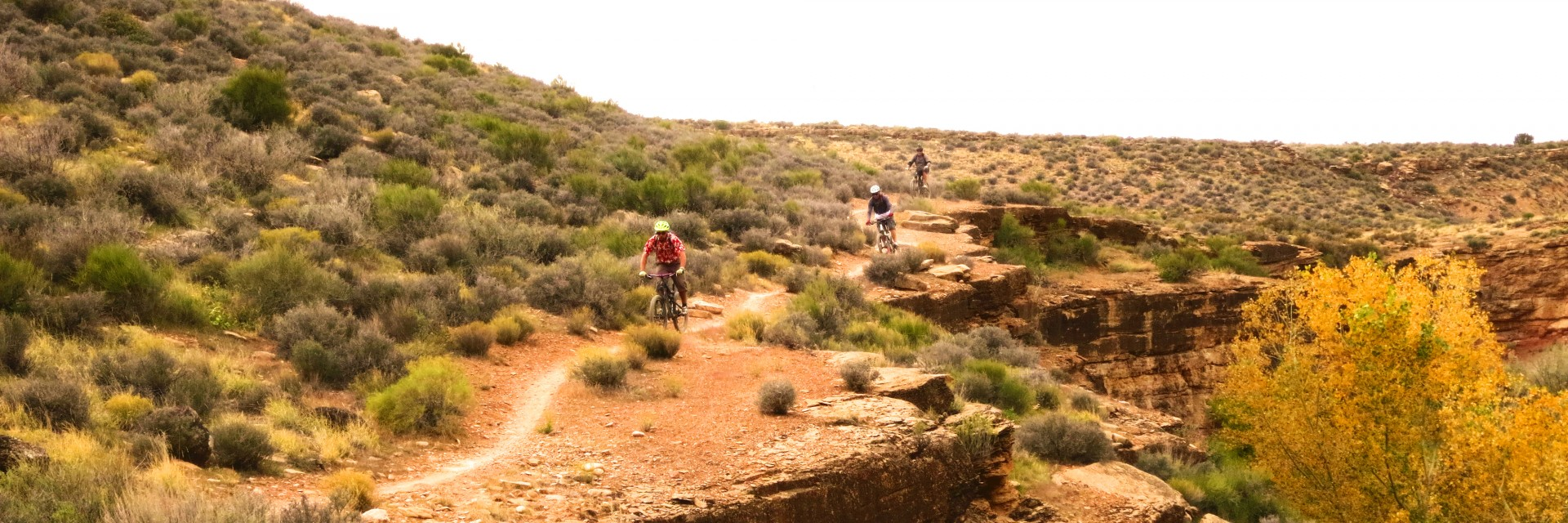 A guide leads mountain bike riders on singletrack section during a 3-day tour of Gooseberry Mesa