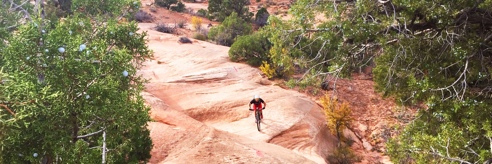 A rider swoops through a fast rollercoaster slickrock section of Ramblin during a guided tour of Navajo Rocks northwest of Moab, UT