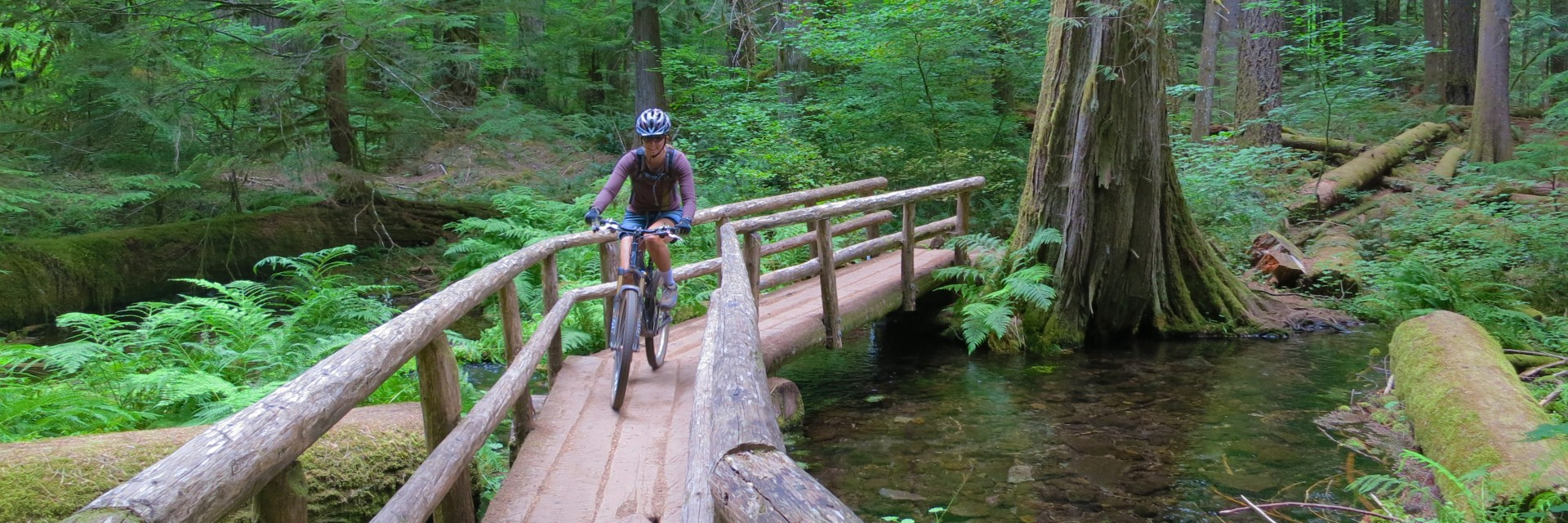The Oregon Cascade Singletrack tour involves lots of wooden bridges