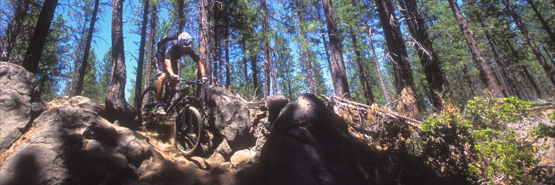 Steep down on Oregon Singletrack near Bend, OR