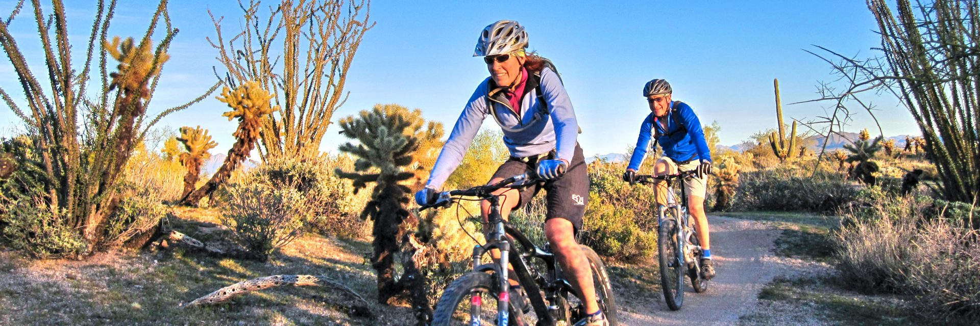 Even during the cold months of November and February, it's sunny and warm on the mountain bike trails in central Arizona