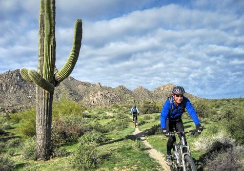 Find warm sunny mountain bike tours even during November and February in the Sonoran Desert of central Arizona
