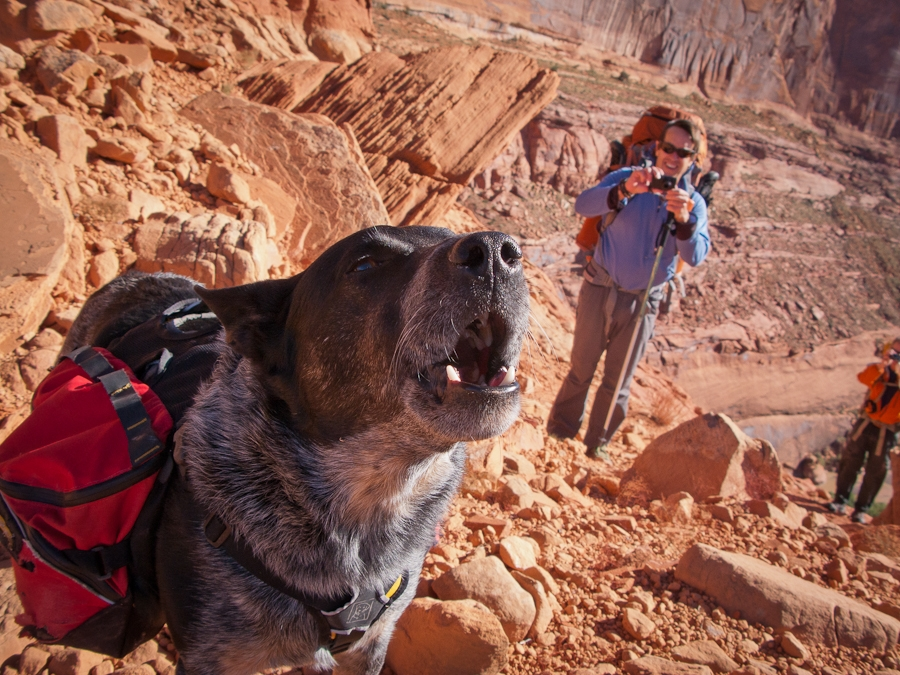 Desert Dawg and his buddy Rob somewhere near Moab.